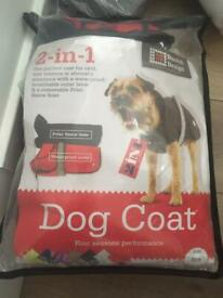 New winter dog cost