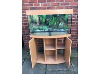Juwel vision 180 fish tank and stand