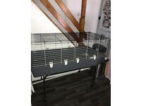 Indoor rabbit cage pets at home grey