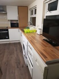 Room to rent in modern shared property. Belfast, BT9 7AW. £275 per month!