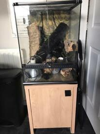 OFFERS NEED GONE! Exo terra viv, vivarium, terrarium stand and extras
