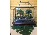 Hand made vintage terrarium with two bonsai trees and terrarium plants