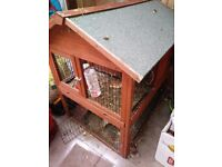 2 male guinea pigs and large hutch