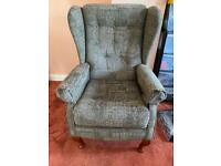 Olive Green stylish wingback chair