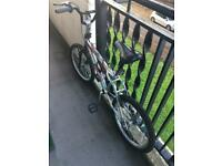 Mini tyre bike