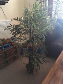 NEXT artificial tree / plant RRP £90