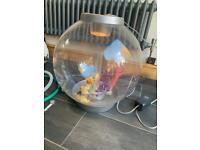 Bio orb 60 Ltr fish tank