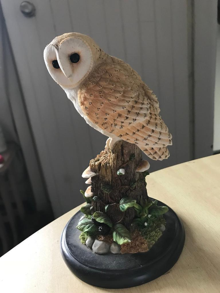 Border Fine Arts Barn Owl In Dalkeith Midlothian Gumtree