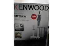 Kenwood HDP300 Hand Blender 800W