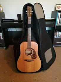 Norman Encore B20 with Case