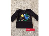 New With Tags! Dino Shirt Size 6 Months - WILL POST FOR £2