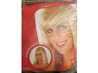 Blonde Fancy Dress Wig