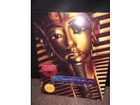 Tutankhamun book