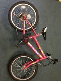 "Raleigh Girls 16"" wheel bike"