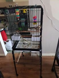 4 bird cages