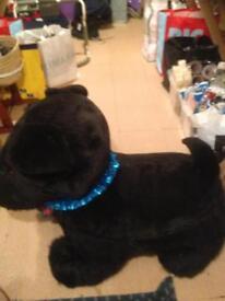 Large toy Scottie dog