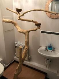 Java tree