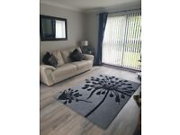 Suite in Cream Leather. 3 + 2 + Mat and Cushions