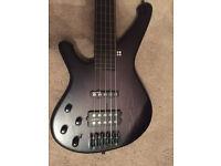Sandberg Custom 5 string fretless bass guitar ( left handed)