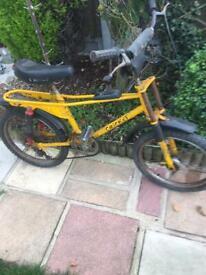 Cinzia cricket bike Raleigh grifter