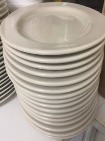 Large 15 inch heavy oval dinner plates