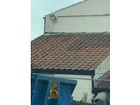 Clay roof pan tiles