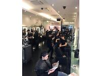 HAIRDRESSER NEEDED FOR BUSY FUN SALON