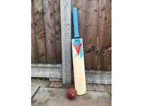 Slazenger Cricket Bat (size 1)