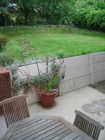 **Lovely garden flat GU1 **
