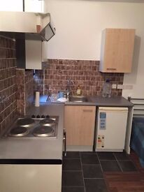 LARGE STUDIO FLAT IN CLAPHAM