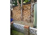 Logs bergian