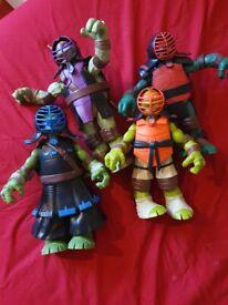 Teenage ninja mutant turtles bundle