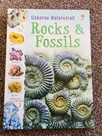 Rocks & Fossils book