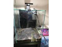 Aquarium Fish Tank Aquael 30 litre Nano Tank *MINT CONDITION* complete with heater and filter.