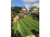 Higgs garden maintenance jet wash, grass cutting, hedge trimming, fence painting and more