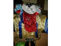 Woman's snow white fancy dress