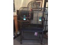 Large parrot cage and stand