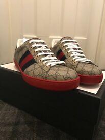 Gucci trainers Men's Uk size 9 / Ace GG Supreme sneaker