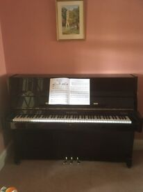 Modern Waldstein Piano