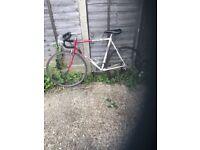 Giant Speeder Large 59cm 10speed Lightweight Hitensile Steel Road Bike Fast 27'' Maillard Wheels