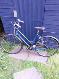 Bicycle for sale (used)