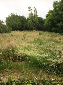 Gardener £50 to cut lawn URGENT