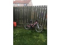 "Girls Apollo Vivid 24"" mountain bike"