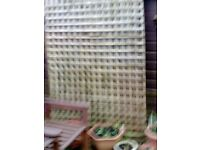 Trellis fence panels . free to collector