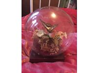 Vintage taxidermy butterflies and flowers in glass ball