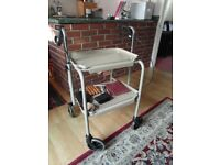 Mobility Walker with trays