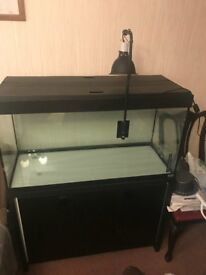 200L Fluval black Fish tank with black cabinet included