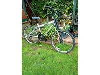 Raleigh bike dirt cross old skool collect wymondham