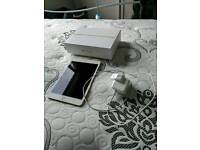 Ipad mini 4 (wifi only)