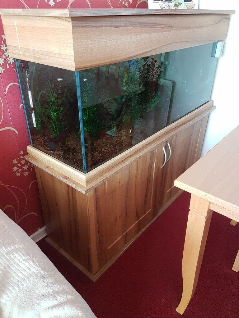 4ft Fish Tank On Wooden Stand With Matching Hood In Gainsborough Lincolnshire Gumtree